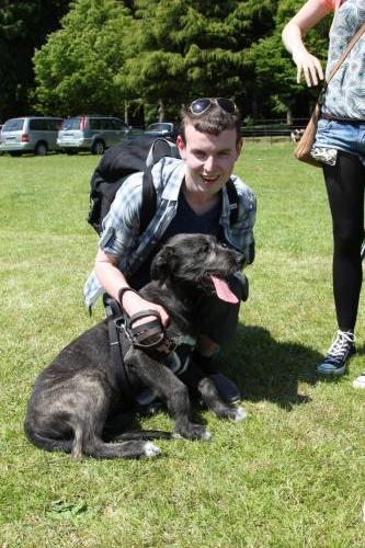 Farnleigh - Irish Wolfhound 2013 06 09 (63)