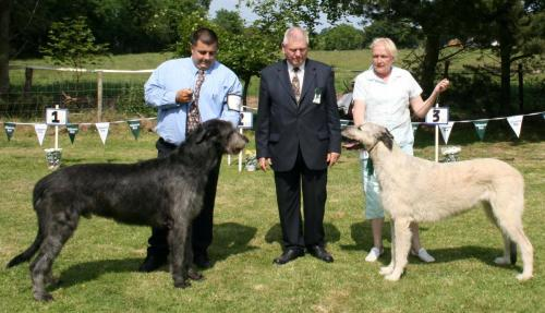 Best of Breed & Res Best of Breed 056