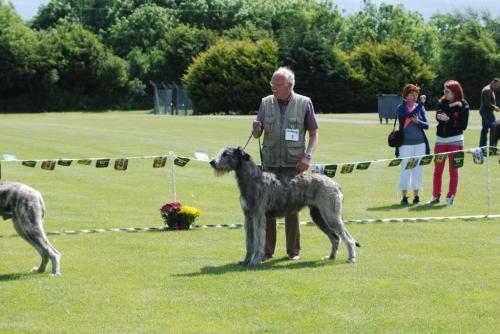 ClubShow2010.cfw 004