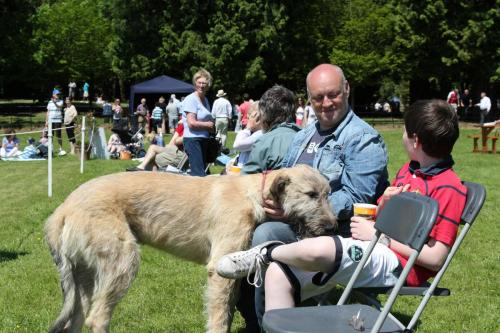 Farnleigh - Irish Wolfhound 2013 06 09 (74)