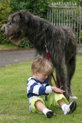 Pup&boy2